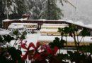 Lussari, Zacchi, Gilberti, le foto e i video delle nevicate tra le Alpi Giulie