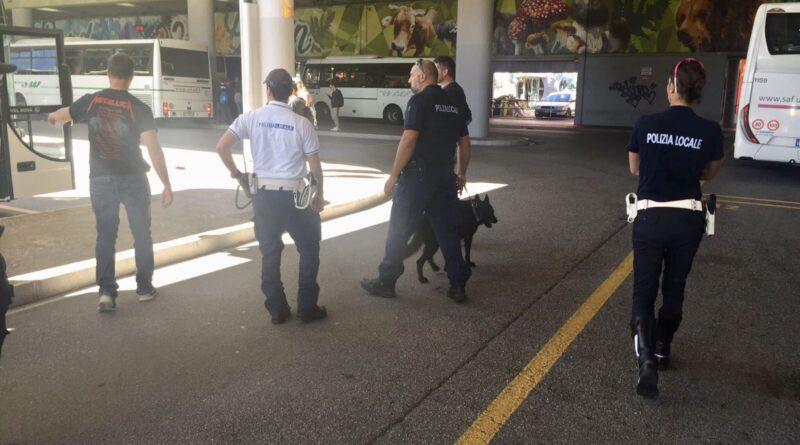 Per la prima volta la Polizia Locale a Tolmezzo con i cani antidroga