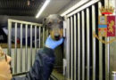 Traffico internazionale di animali, un furgone con 12 cani fermato dalla Polizia Stradale a Palmanova