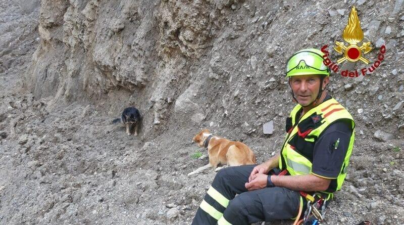 Intervento di 5 ore dei Vigili del Fuoco per recuperare due cani a Sauris