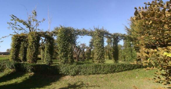 """L'Ecomuseo delle Acque del Gemonese """"sdogana"""" i roccoli"""